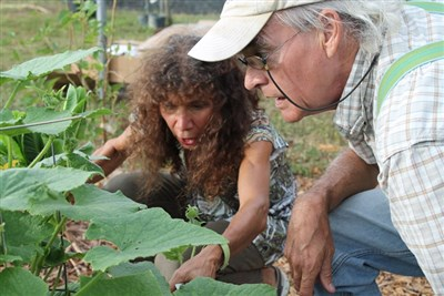 A woman and man discuss plants growing in the Cornerstone Garden.